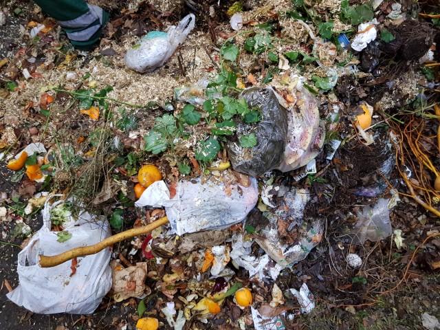 mit Abfall verunreinigtes Grüngut